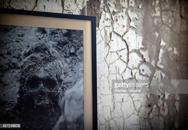 Srebrenica Memorial photo of an exhumed skull on August 07 in Srebrenica Bosnia and Herzegovina In July 2005 Serbian units under General Ratko Mladic...