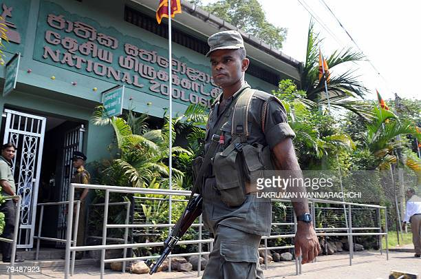 A Sri Lanka army soldier patrols outside the country's main zoo in Dehiwala just outside Colombo 03 February 2008 after a blast inside the zoo A hand...