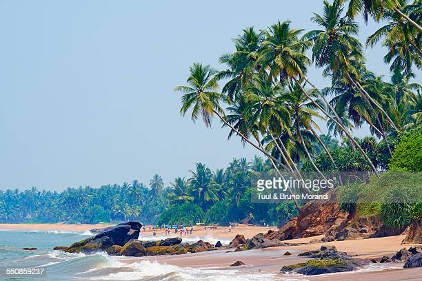 sri lanka, bentota beach - sri lanka stock pictures, royalty-free photos & images