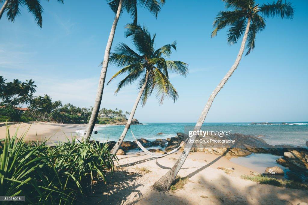 Sri Lanka hammock : Stock Photo