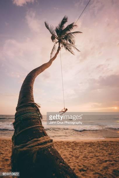 Sri Lanka tree swing