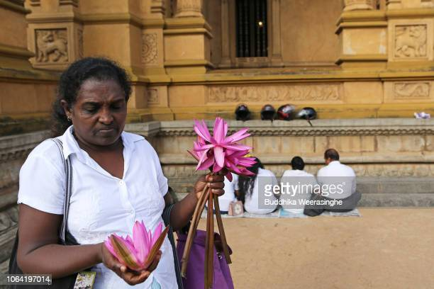 Sri Lankan Buddhist devotee carries flowers and takes a part religious ritual as she mark Poya day or Full Moon Day at a temple on November 22 2018...