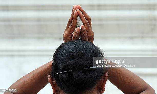 A Sri Lankan Buddhist devotee prays at a temple during the Vesak Festival in the Colombo suburb of Bellanwela on May 14 2014 Sri Lankan Buddhists are...