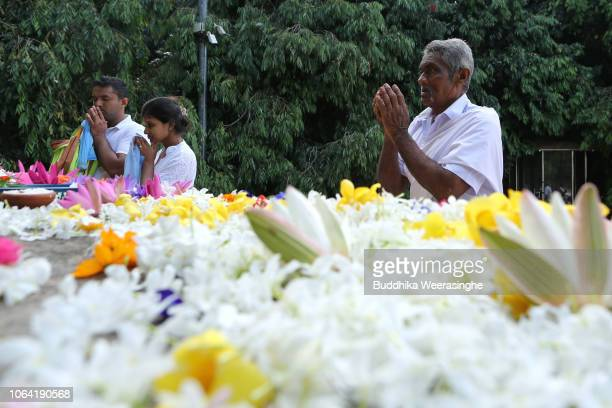 Sri Lankan Buddhist devotees offer flowers and pray as they mark Poya day or full moon day at a temple on November 22 2018 in Colombo Sri Lanka...