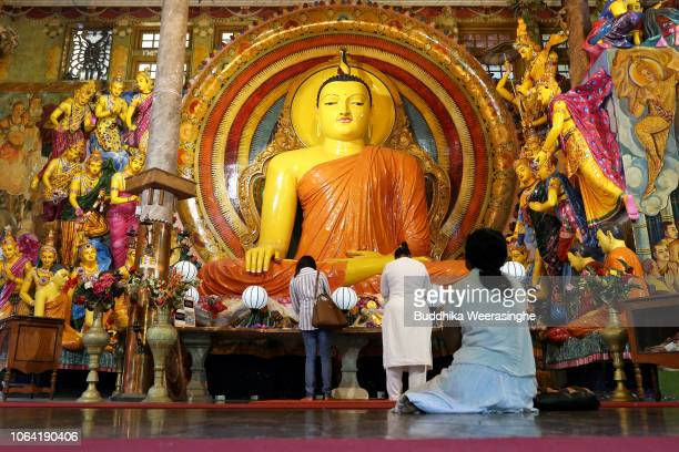 Sri Lankan Buddhist devotees pray and meditate as they mark Poya day or full moon day at a temple on November 22 2018 in Colombo Sri Lanka Buddhists...