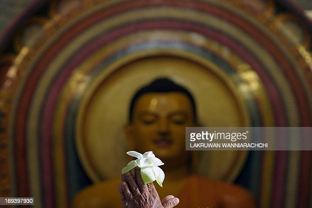 A Sri Lankan Buddhist prays at the Bellanwelna Temple during the Vesak Festival in the Colombo suburb of Bellanwela on May 24 2013 Wesak or Vesak...
