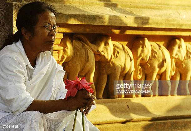 Sri Lankan Buddhist woman sits with flowers at the Kelani temple in the Kelaniya suburb of Colombo 03 January 2007 as they celebrate Duruthu Poya day...