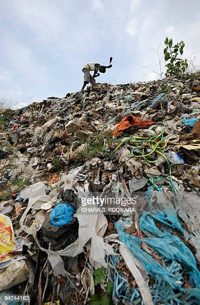 A Sri Lankan child scavenges through a garbage dump in the capital Colombo December 10 2009 The piling mountains of rubbish has led to environmental...