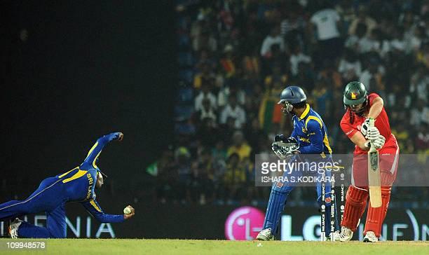 Sri Lankan cricketer Mahela Jayawardene catches the ball to dismiss Zimbabwe's Greg Lamb as Kumar Sangakkara looks during the Group A match in the...