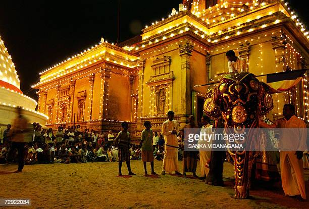 Sri Lankan elephant stands on the upper temple terrace before the start of the annual Duruthu traditional procession at Kelani temple in Kelaniya...