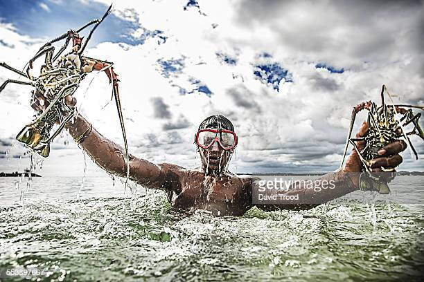 sri lankan fisherman with live lobster - catching stock pictures, royalty-free photos & images