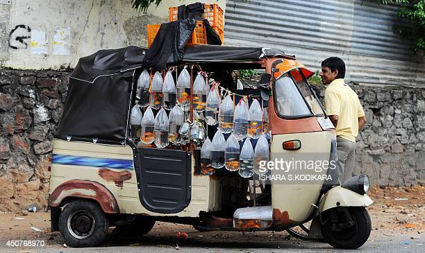 A Sri Lankan freshwater fish street vendor waits for cutomers beside his auto rickshaw with fish in plastic bags hanging from it in Colombo on June...