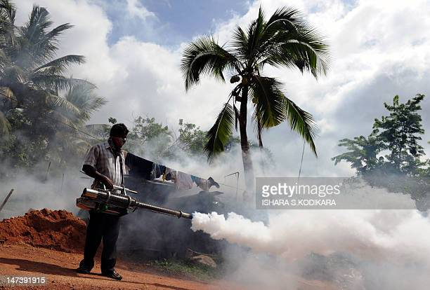 A Sri Lankan municipal worker fumigates insecticide to curb mosquito breeding in the Colombo suburb of Wattala on June 29 during the start of a major...