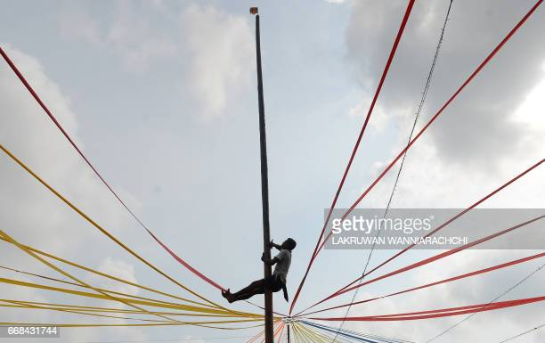 A Sri Lankan participant climbs a pole at Piliyandala near Colombo on April 14 as he takes part in the traditional festival game of 'grease tree'...