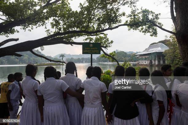 sri lankan school girls at kandy lake - sri lankan school girls stock photos and pictures