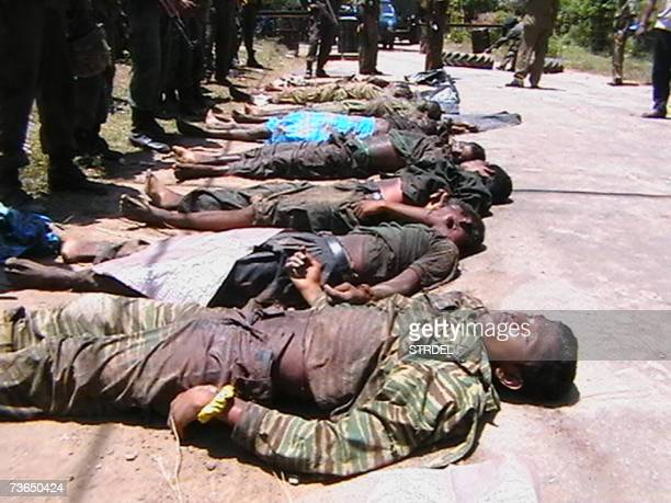 Sri Lankan security personnel display the bodies of eight Tamil Tiger rebels killed 21 March 2007 during a confrontation with troops in the islands...