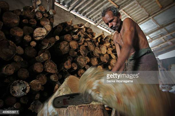 Sri Lankan worker cuts a tree stump at a firewood store in Colombo on January 06 2013 The demand for firewood has increased across Sri Lanka as the...