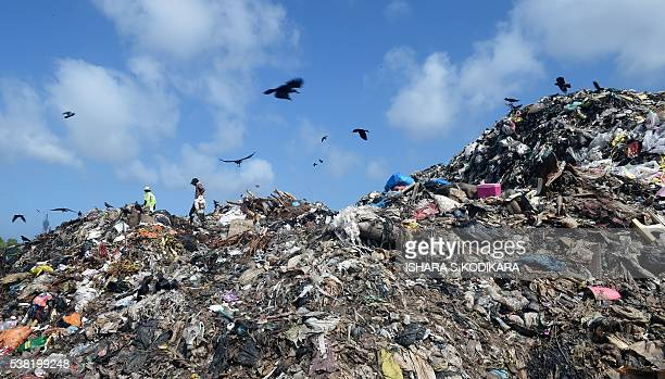 Sri Lankan workers sort garbage at a landfill in the Kolonnawa suburb of Colombo on June 5 2016 Sri Lanka is stepping up environmental awareness and...