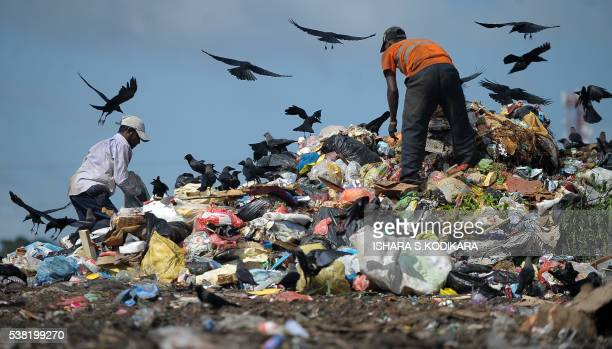 Sri Lankan workers sorts garbage at a landfill in the Kolonnawa suburb of Colombo on June 5 2016 Sri Lanka is stepping up environmental awareness and...
