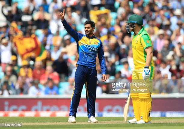 Sri Lanka's Dhananjaya de Silva celebrates the wicket of Australia's Usman Khawaja during the ICC Cricket World Cup group stage match at The Oval...