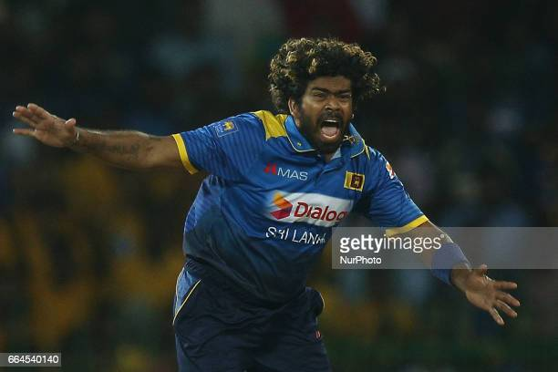 Sri Lanka's Lasith Malinga celebrates after taking the wicket of Bangaldesh's Tamim Iqbal 1st T20 International cricket match between Sri Lanka and...