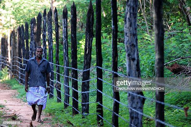 SriLankaconflictmilitarylandFEATURE In this photograph taken on June 9 a Sri Lankan Tamil villager walks past a new barbedwire fences that has come...