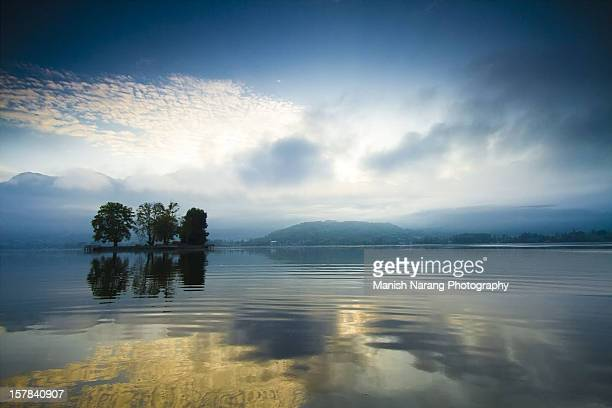 srinagar char chinar - kashmir valley stock photos and pictures