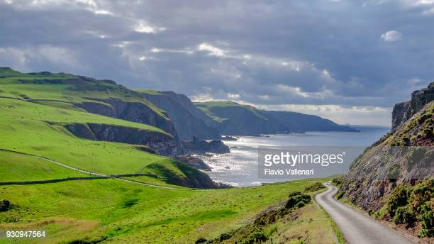 st abb's head, a rocky promontory and a national nature reserve in berwickshire, scotland. - nature reserve stock pictures, royalty-free photos & images