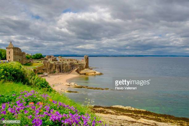 st andrews castle - scotland - st. andrews scotland stock pictures, royalty-free photos & images