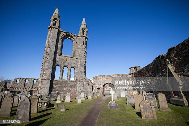 st andrews cathedral, scotland - christine wehrmeier stock pictures, royalty-free photos & images