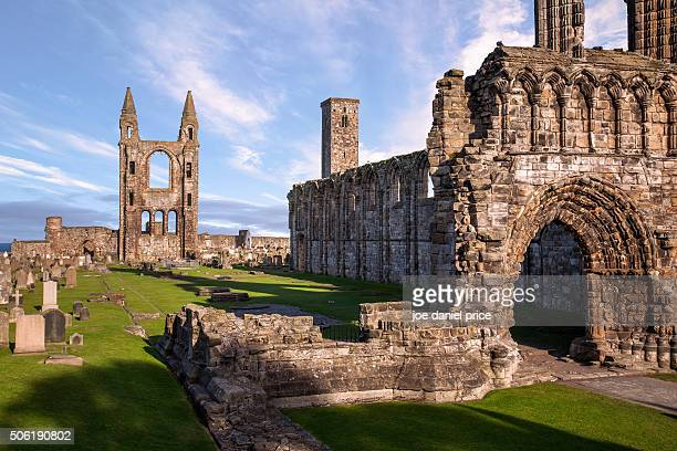 st andrews cathedral, st andrews, scotland - st. andrews scotland stock pictures, royalty-free photos & images