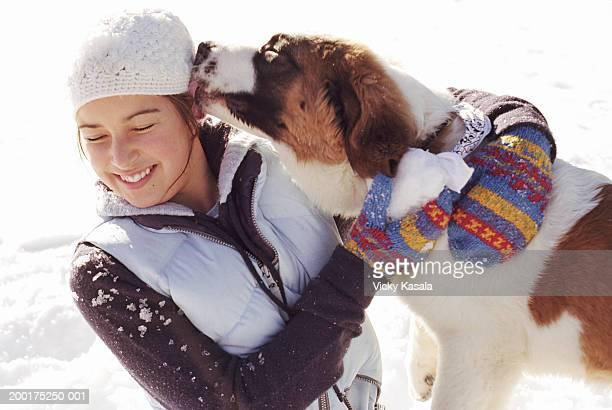 St. Bernard dog licking teenage girl's (14-16) head