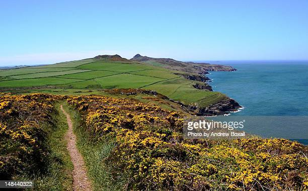 st david's head coast path view - st davids stock pictures, royalty-free photos & images