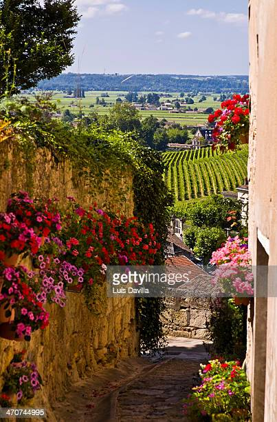 st. emilion in bordeaux region. france