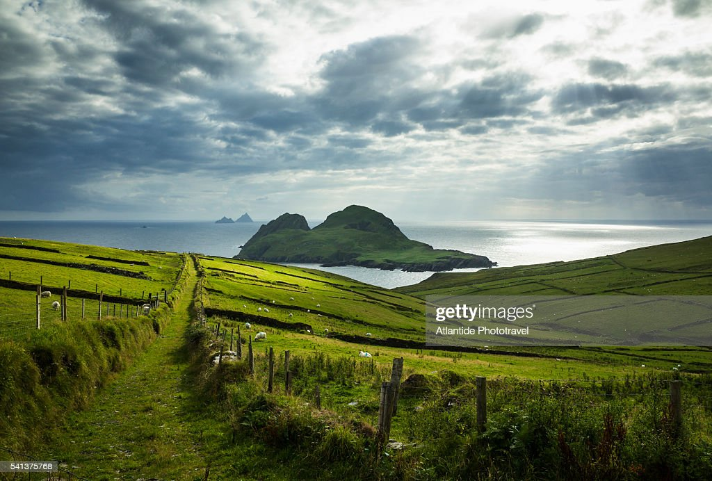 St. Finian's Bay, view of Puffin Island : Stock Photo