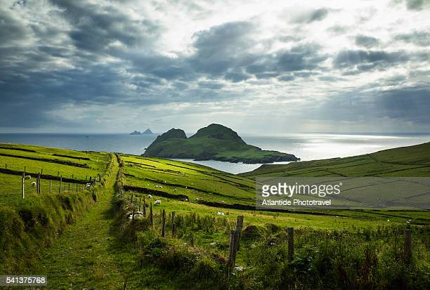 st. finian's bay, view of puffin island - ireland stock pictures, royalty-free photos & images