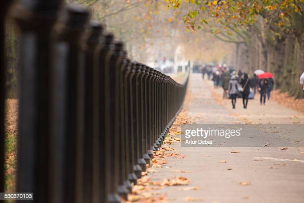 St James's Park autumn view with vanishing point.