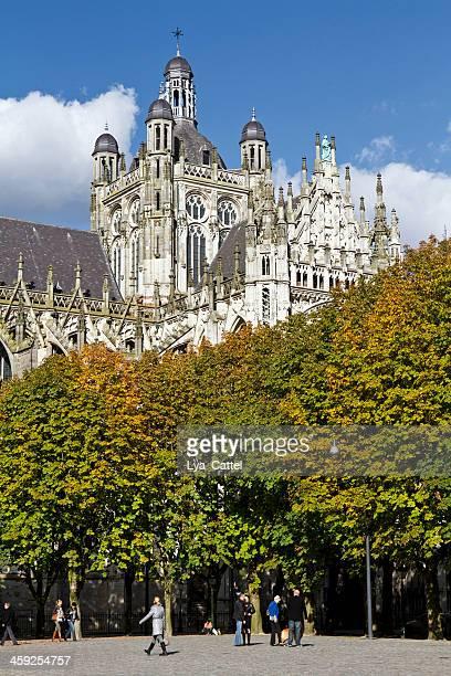 st. jan cathedral, 's hertogenbosch # 14 - 's hertogenbosch stockfoto's en -beelden
