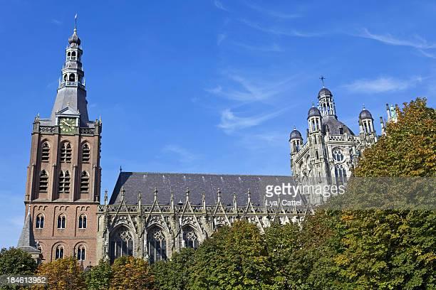 st. jan's cathedral in 's hertogenbosch # 7 xxl - 's hertogenbosch stockfoto's en -beelden
