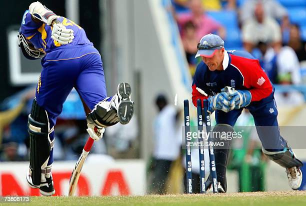 St John's ANTIGUA AND BARBUDA Englands's wicketkeeper Paul Nixon takes off the bails to dismiss Sri Lankan Dilhara Fernando during the ICC World Cup...