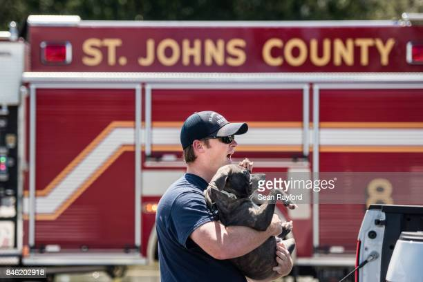 St Johns County fireman TJ Hollings rescues a dog from flood waters caused by Hurricane Irma Sept 12 2017 in Hastings Florida United States The storm...