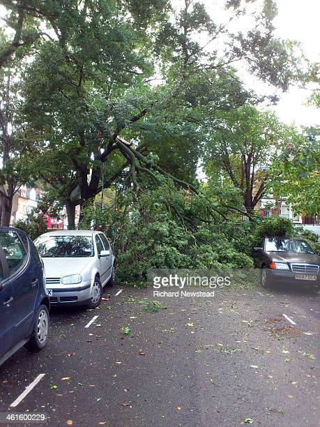 CONTENT] St Jude day storm damage Trees fallen on road and cars Highgate London 28th October 2013