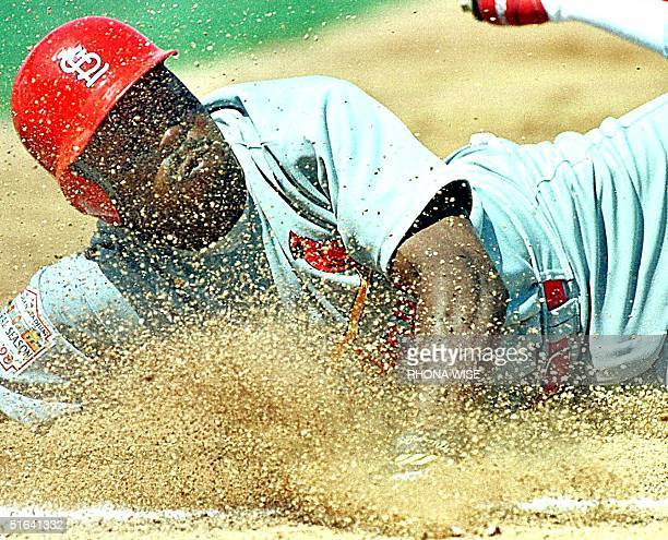St Louis Cardinal left-fielder Vince Coleman dives back to first base gets only to be picked off by Baltimore Oriole pitcher Mike Mussina in second...