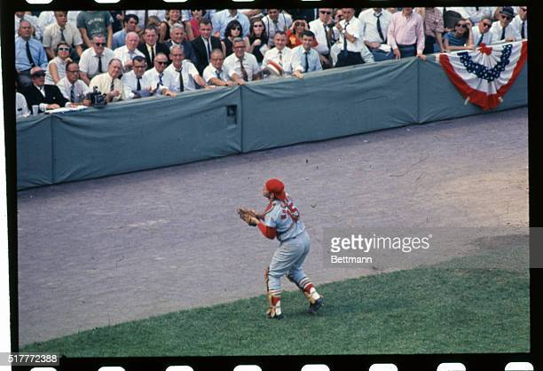 St Louis Cardinals catcher Tim McCarver moves back to catch fly ball hit by Reggie Smith in 2nd inning of second game of World Series October 5th