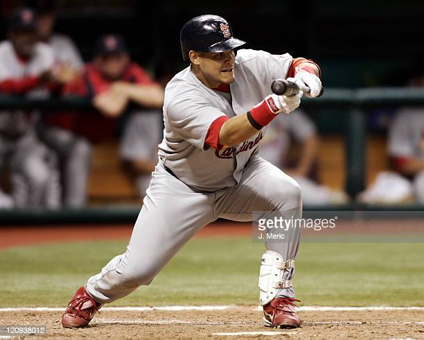 St Louis Cardinals catcher Yadier Molina looks to bunt for a sacrifice in Friday night's game against the Tampa Bay Devil Rays at Tropicana Field in...