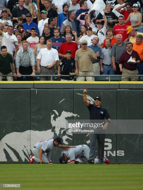 St Louis Cardinals' Center Fielder Jim Edmonds holds his head after hitting the wall attempting to catch Joe Crede's home run during the game against...