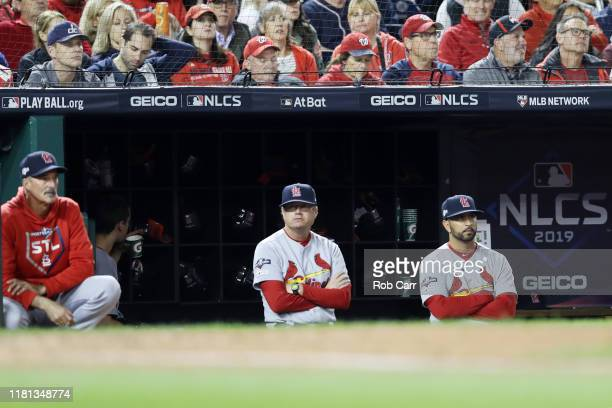 St Louis Cardinals manager Mike Shildt looks on in the fifth inning against the Washington Nationals during the National League Championship Series...