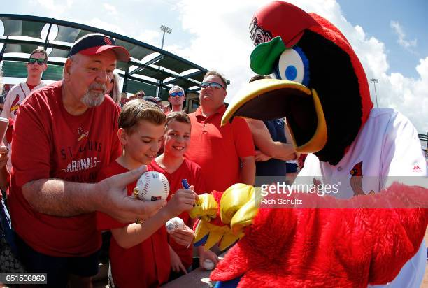 St Louis Cardinal's mascot Fredbird signs autographs before a spring training game against the Houston Astros at Roger Dean Stadium on March 9 2017...