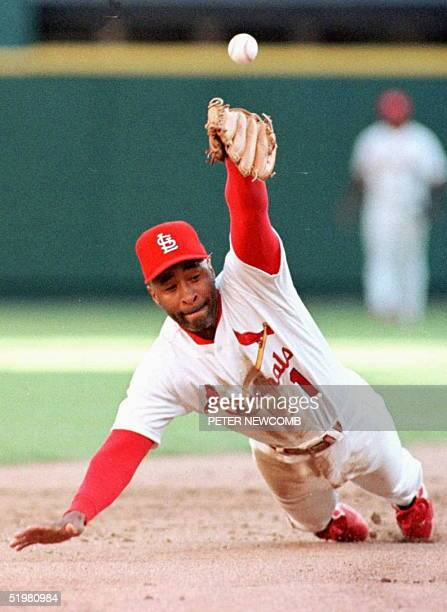 St Louis Cardinals' Ozzie Smith knocks down a hit by the San Diego Padres Rickey Henderson 03 October during the sixth inning of their National...