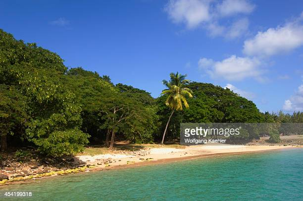 St Lucia Island Pigeon Island Beach